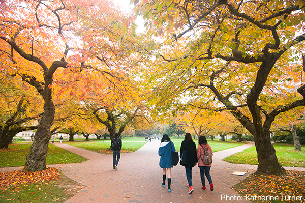 Fall in the Quad, University of Washington
