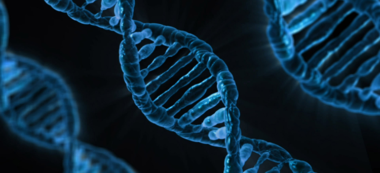Large cancer genetic study finds genetic link between cancers