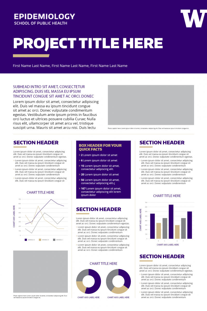Vertical research poster template